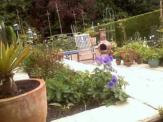 Garden and llqs08 049